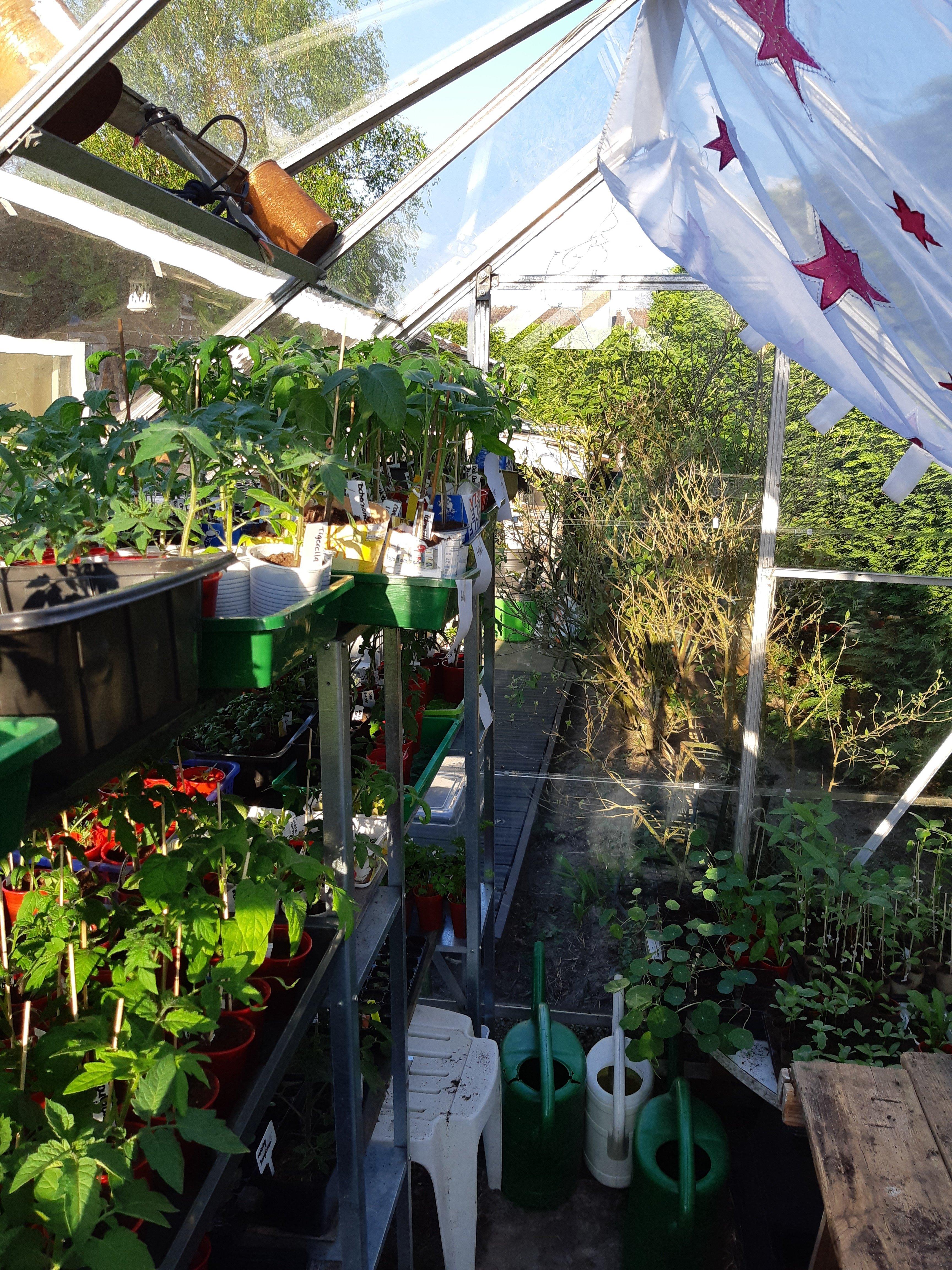 Zaaien, planten en verspenen.
