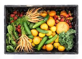 Overige groenten